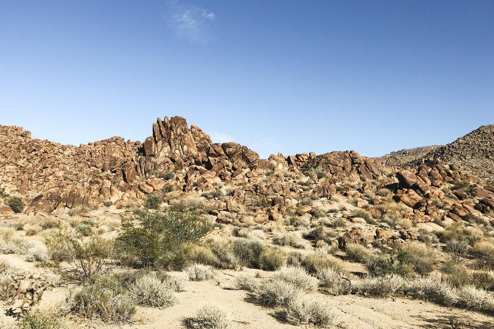 chrissihernandez_california-nevada-joshuatree-49palmsoasis (13)copy2500.jpg