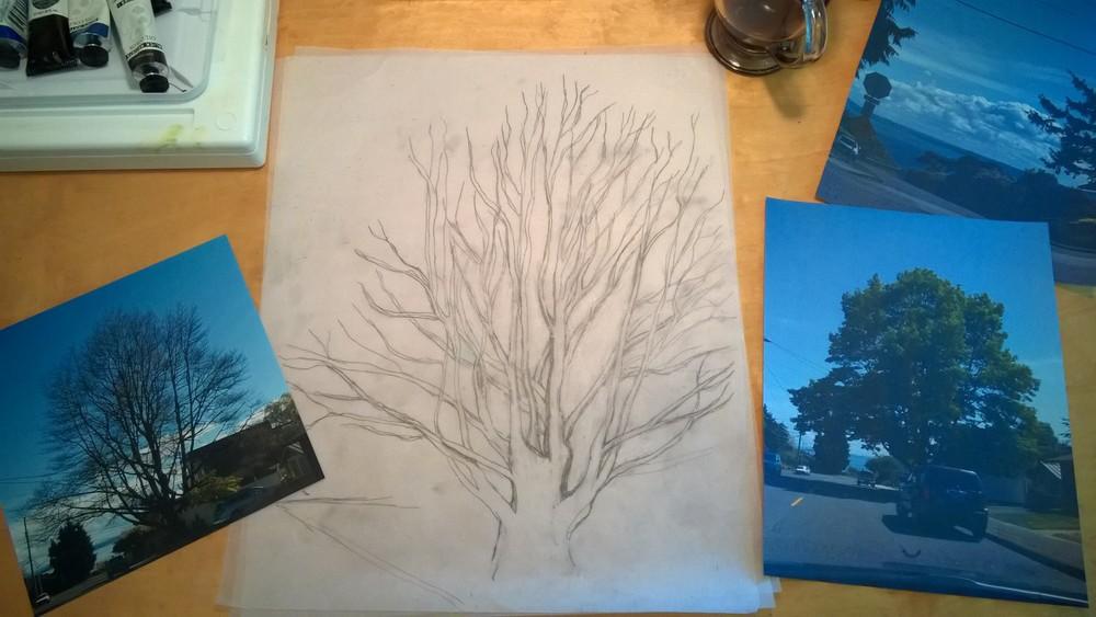 Figure  3 : Sketch.   Pre-tree hollow.