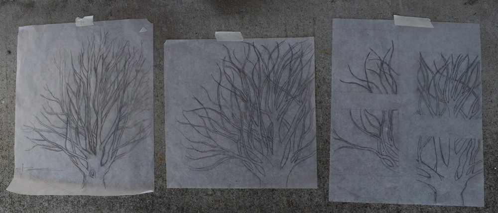 Figure 2: Progression of the tree sketch.