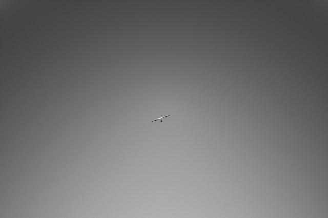 Hang+Gliding-13.jpg