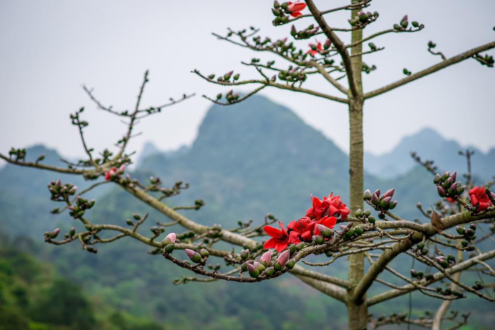 Beautiful scenery. Perfume Pagoda. Hanoi, Vietnam