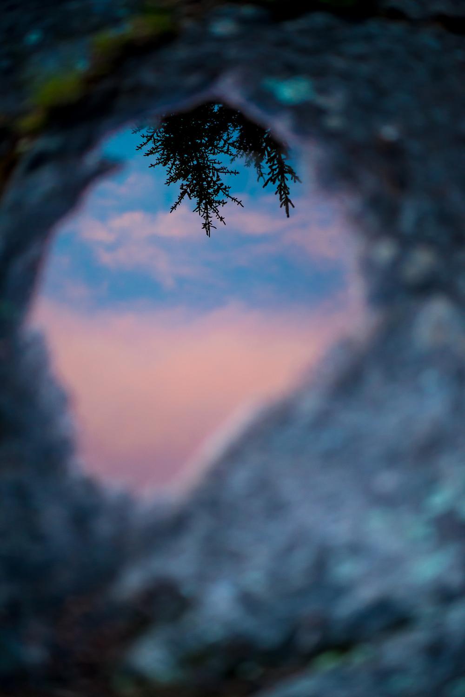 Puddle reflection. Cross Bay Lake