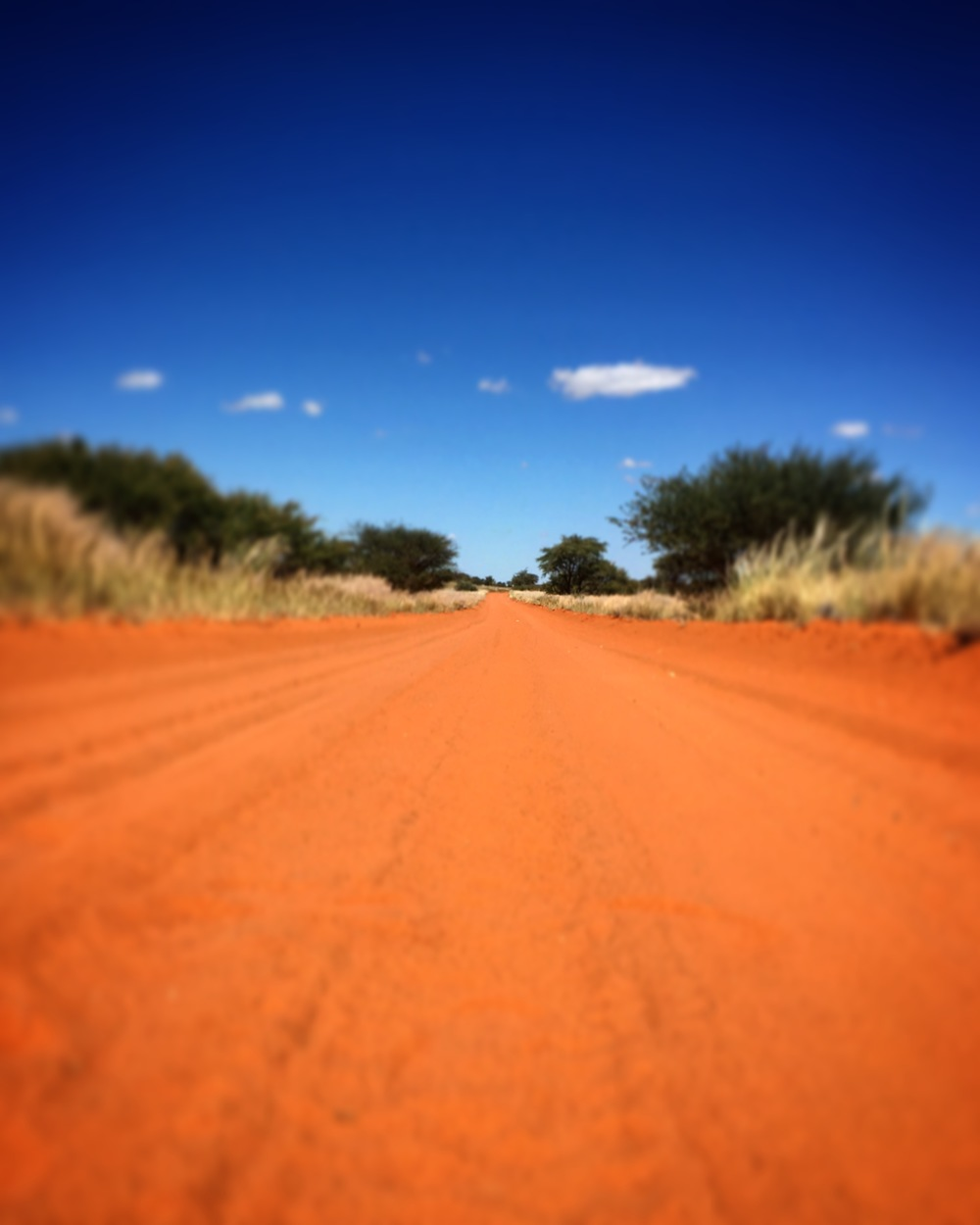 Sand Road In Namibia