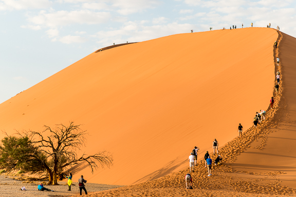 Climbing Dune 45. I'm definitely not alone in the desert anymore.