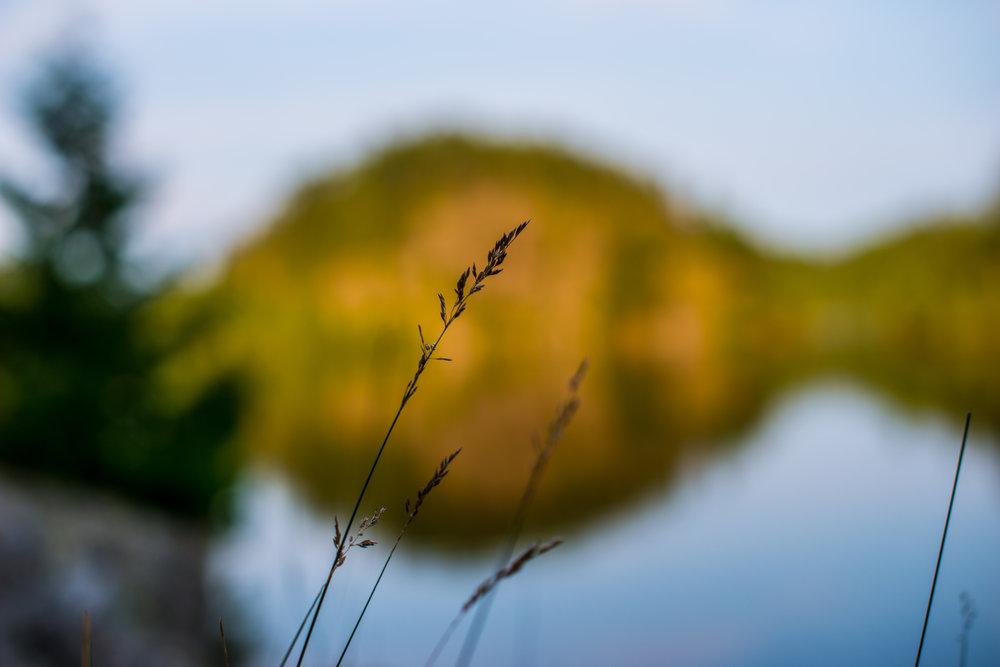 Sunset Cherry Lake...