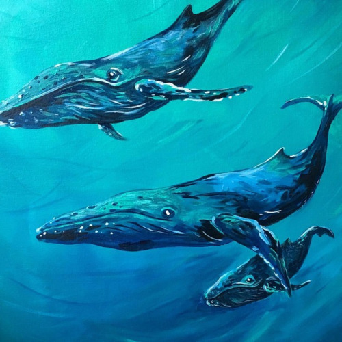 whales-detail
