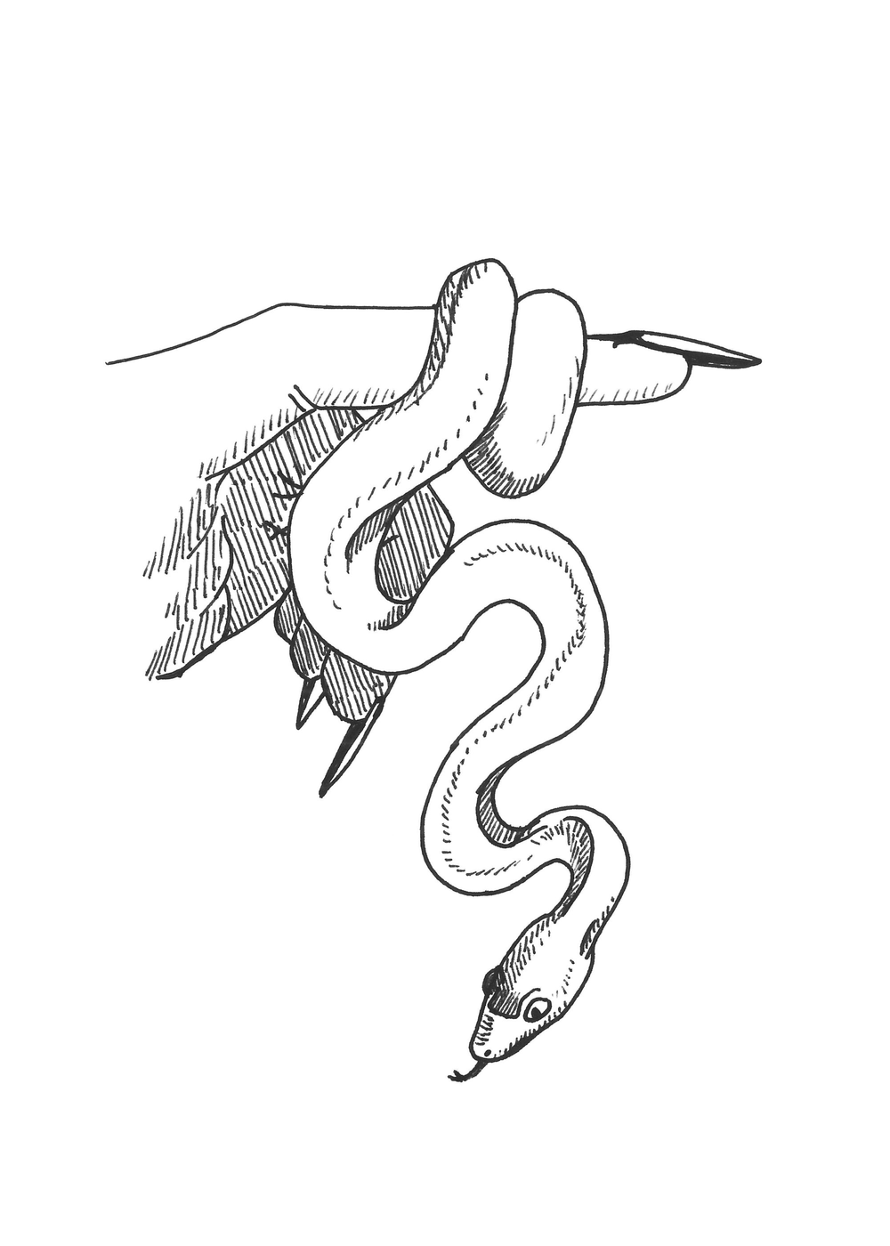 snake (5x7).png