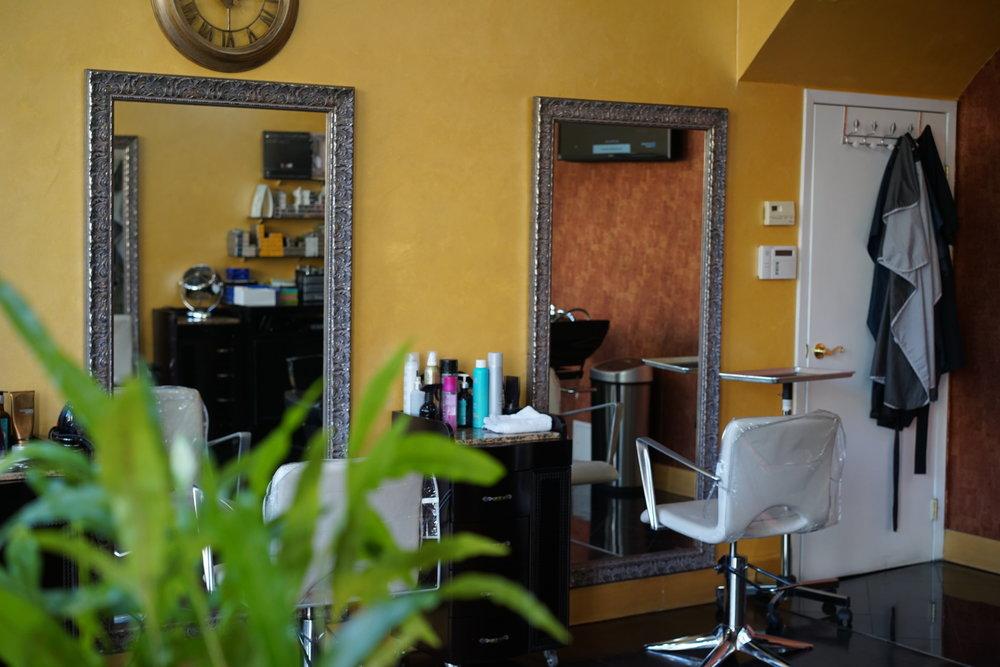 christine_the_style_d_affaire_rêve_studio_hair_salon_astoria_nyc_natural_hair_haircutsJPEG