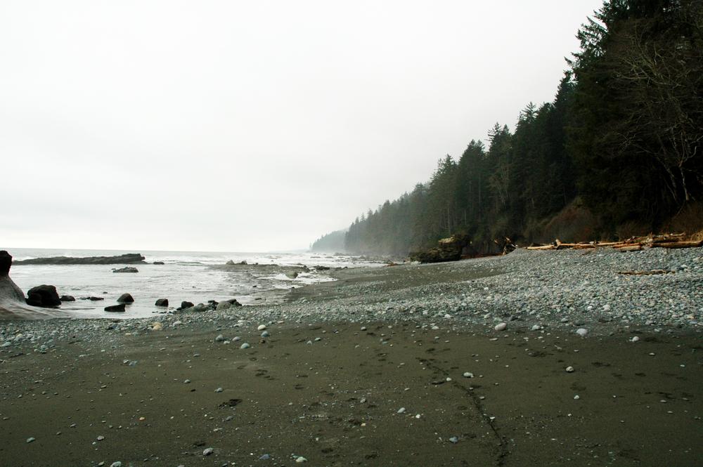 vancouver island 442.jpg