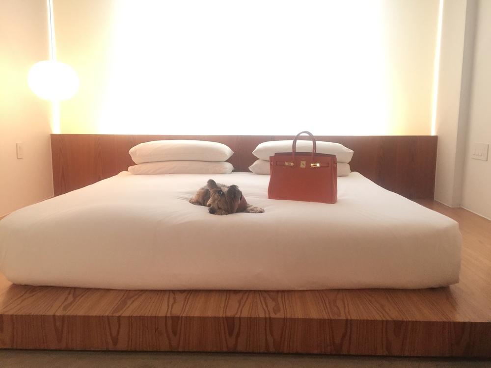 hotel_americano_nyc_hotel