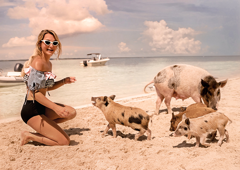 best-instagram-spots-abacos-bahamas-pigs