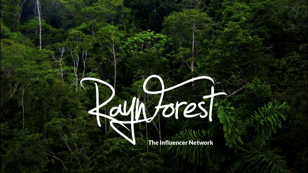 Raynforest pitch deck 2013-07-29 1.jpg