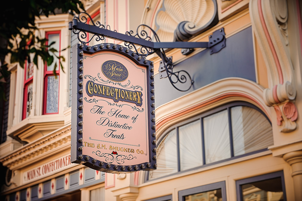 Disney 2015-1000.jpg
