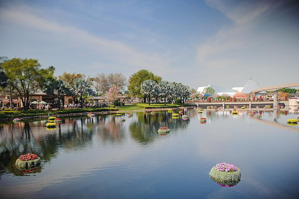 Disney 2015-1009.jpg
