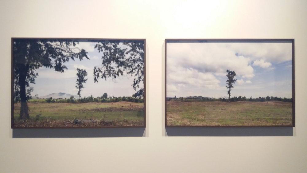 Alice Miceli   ,    Em Profundidade (campos minados/ Camboja #1 e #11)