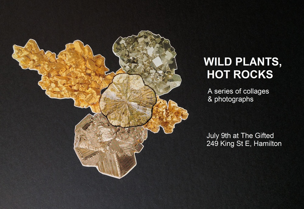 I'm VERY excited to be hosting my first ever art show!   Wild Plants, Hot Rocks is a series of collages & photographs by Laura Kay Keeling. The exhibit will be showing at The Gifted for the month of July. Come celebrate the opening with us on July 9th, there will be drinks, prints, photobooks & all the fun things that The Gifted has in store (rainbow Alpacasso anyone?).    More information:    The Gifted: http://thegifted.ca  www.instagram.com/thegiftedhamilton   Laura Kay Keeling:  www.instagram/com/lllllllllllllllllkk  Photo book preview: http://www.blurb.ca/b/7171529-wild-plants