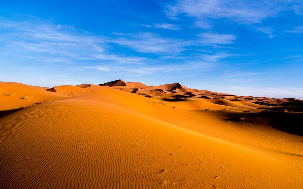 Dunes-6545.jpg