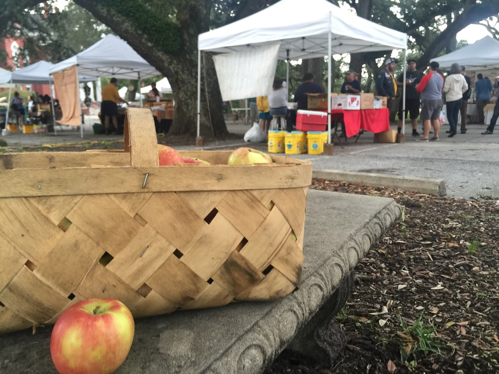 hand picked honeycrisp apples from the beaufort farmers market