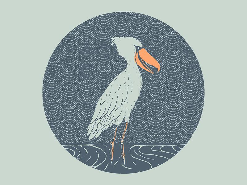 shoebill-stork.jpg