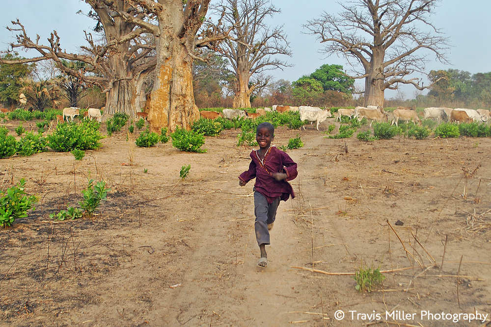 In Pursuit      Si Kunda, The Gambia