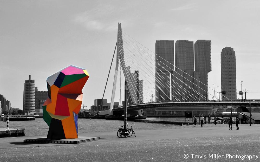 A Modern City /  Rotterdam, The Netherlands