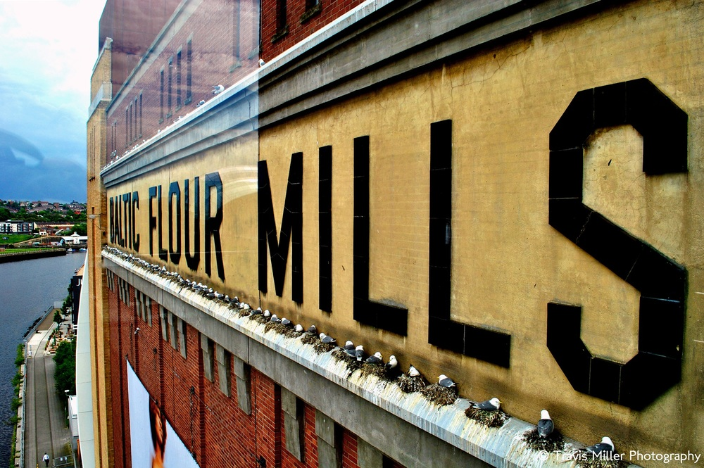 Baltic Flour Mills /   Newcastle, England