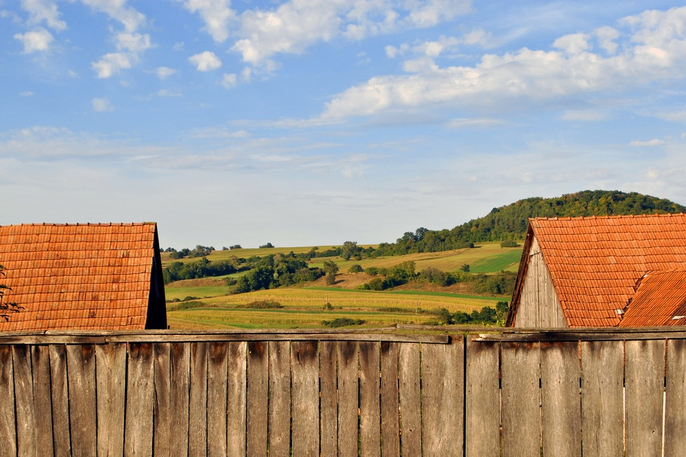 Fence and Roofs sm.jpg