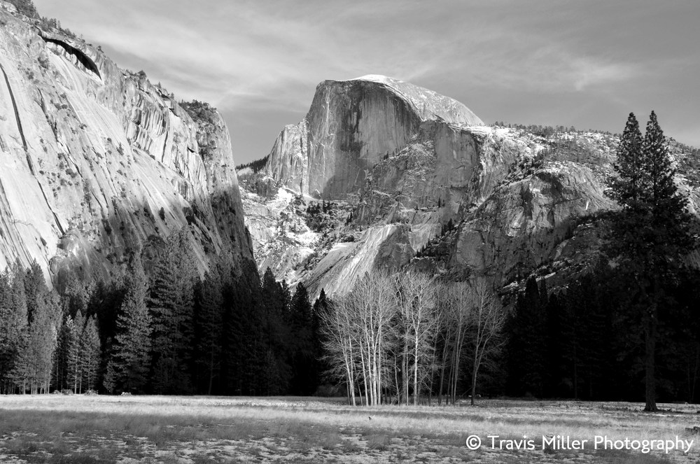 A Classic Vista /    Yosemite Valley, CA