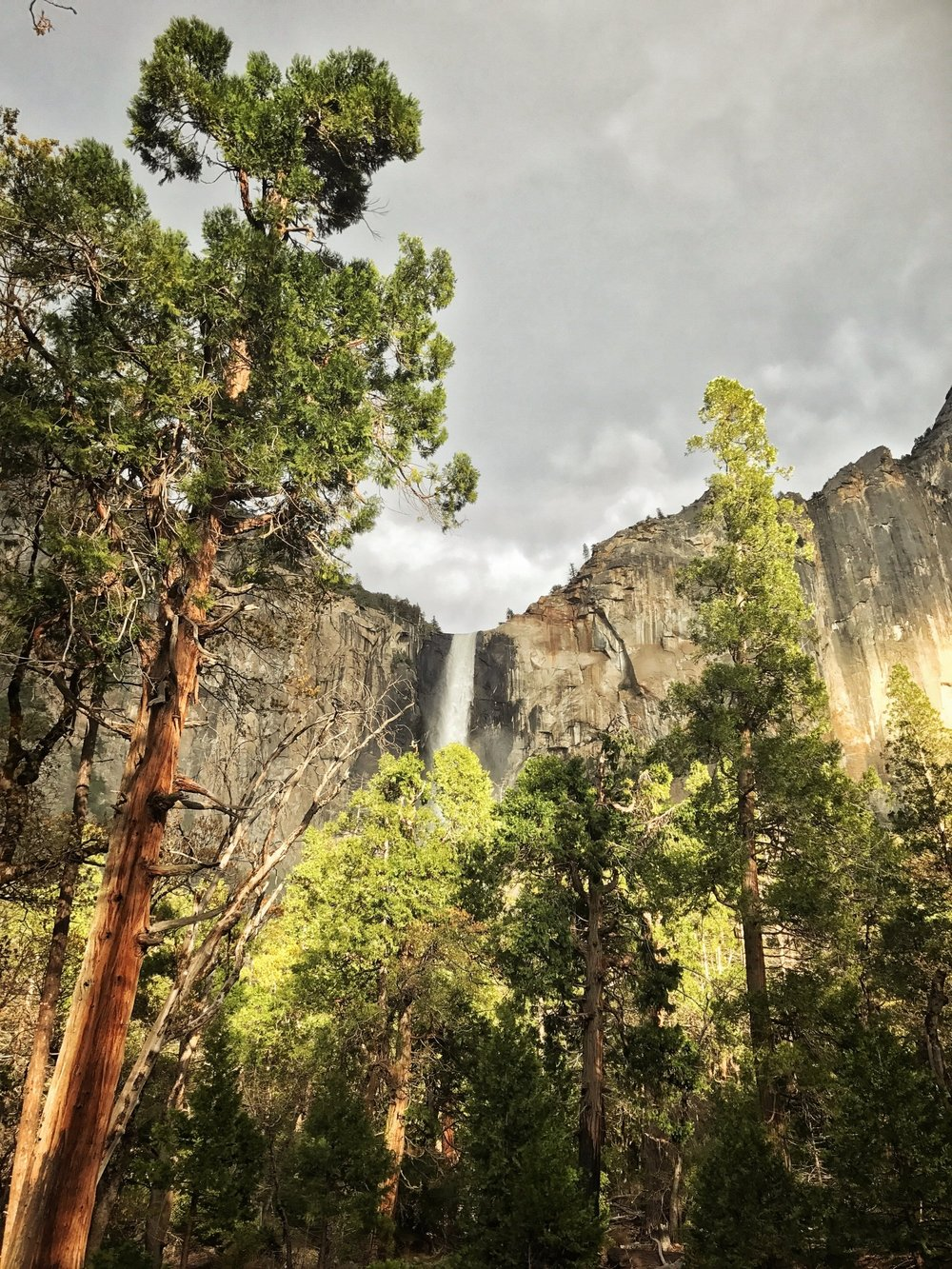 Yosemite Blog 9.jpg