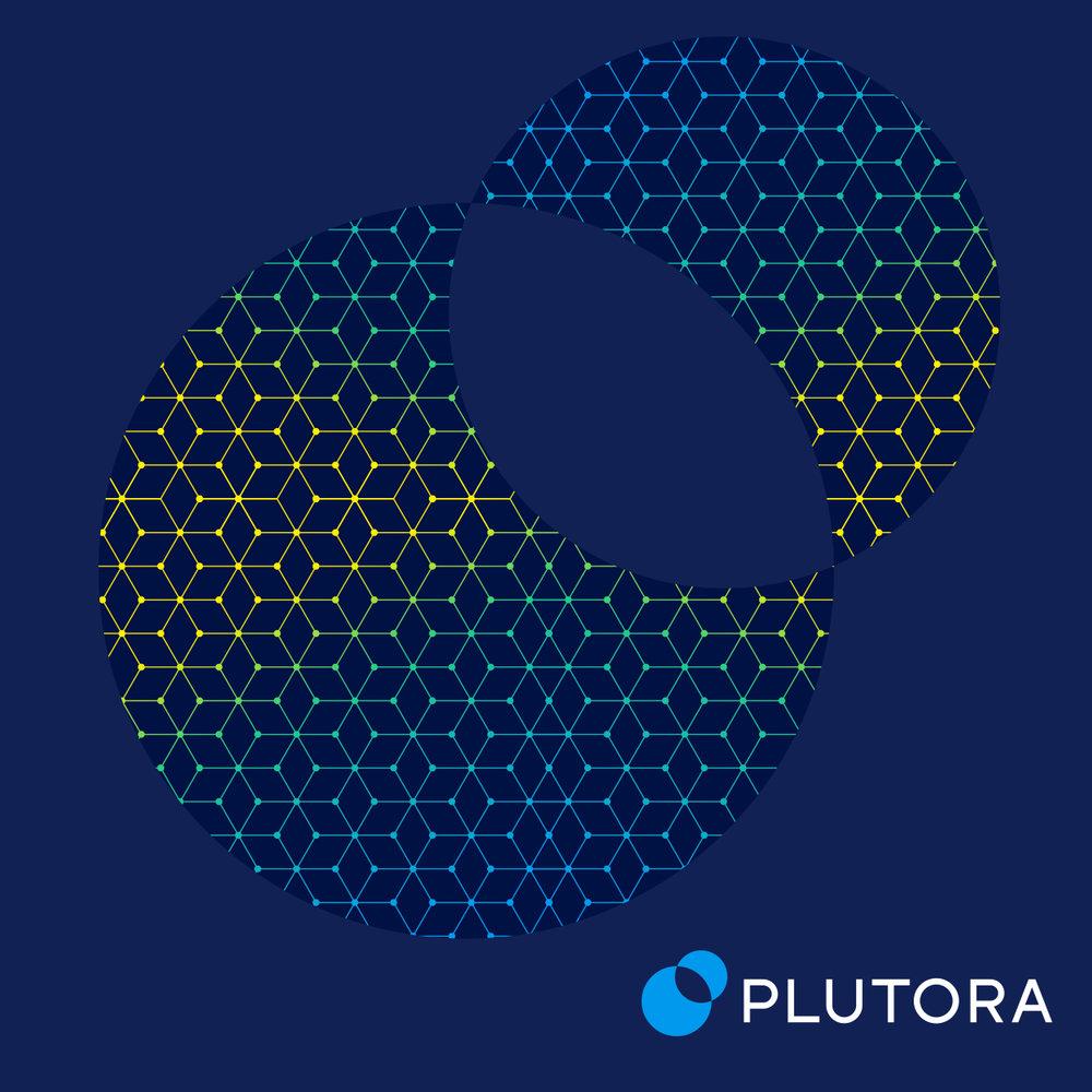 Plutora_Reject2.jpg