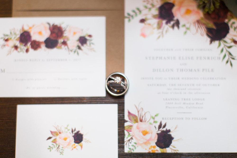 dillon+stephanie-wedding-3.jpg