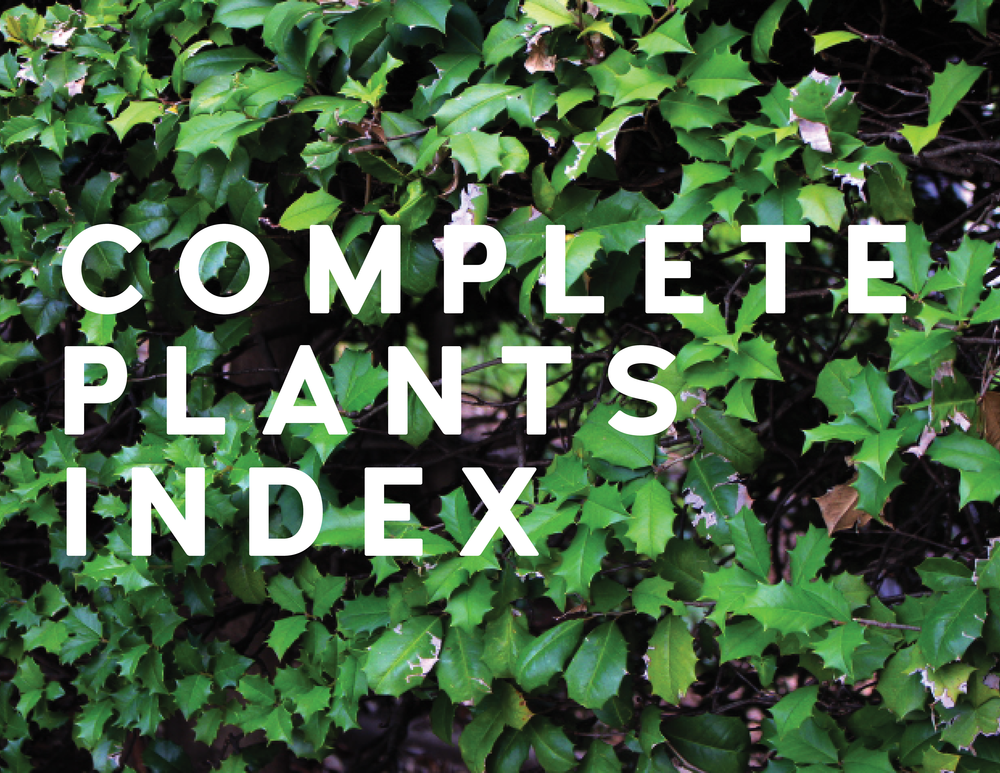 IYE COMPLETE PLANTS INDEX