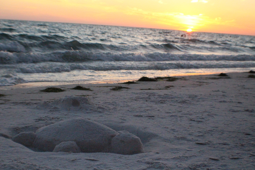 Lido beach sunset