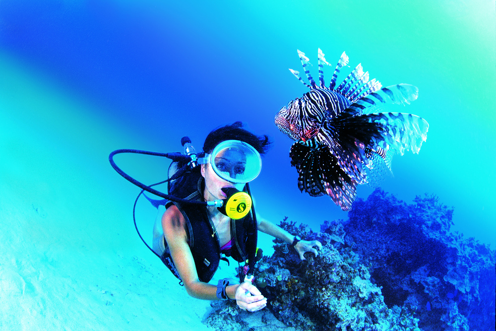 DIVING Indonesia's warm, pristine waters are renowned for its incredible marine. Ratu Motu is one of the most well–equipped sport diving vessels in the world.