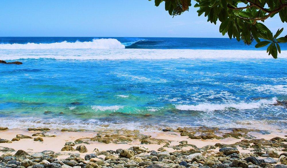 Coconut+Grove Surfing Samoa