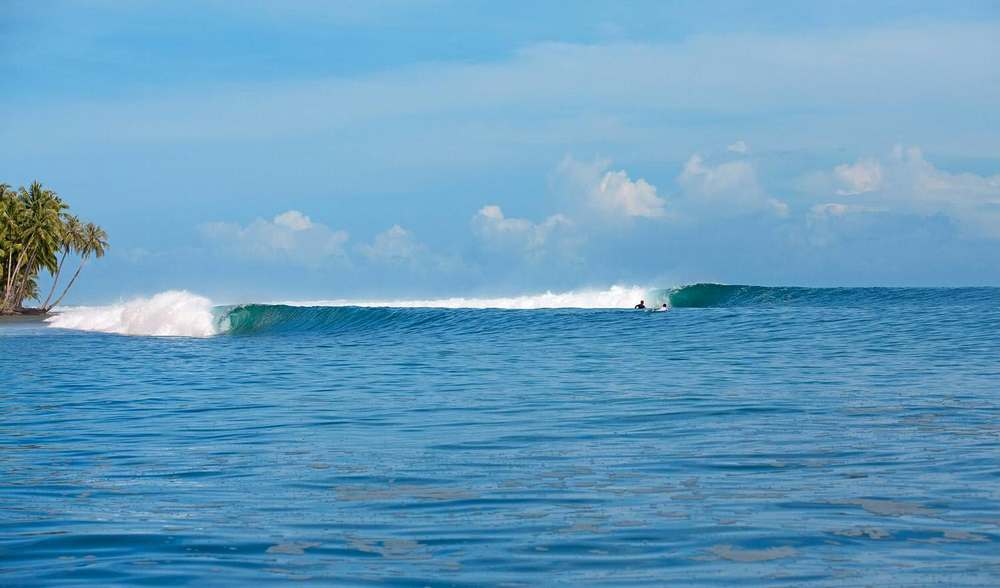 Pinnacles on telo surf Indonesia perfect left
