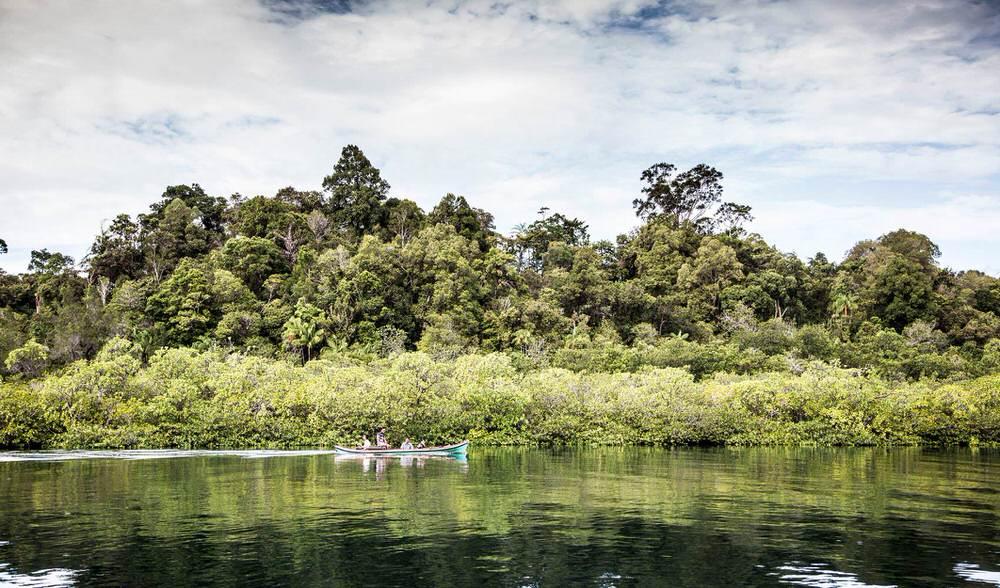 Pinnacles on Telo island private jungle surf