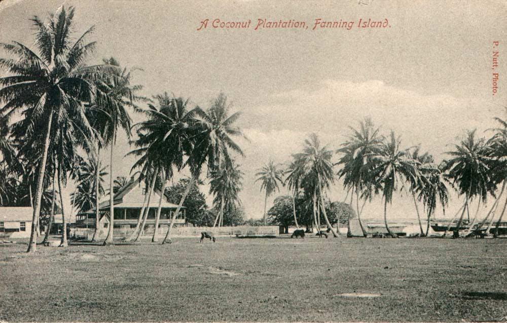 Fanning-Island-Resort the history of fanning island