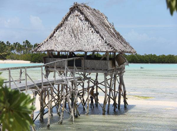 Fanning-Island-Resort natural driftwood structure