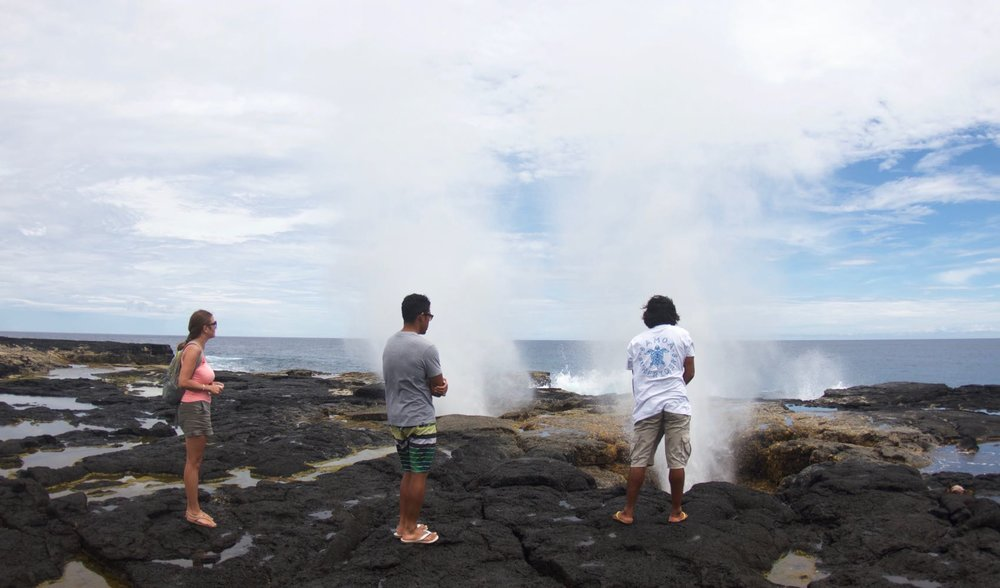 The Blowholes.