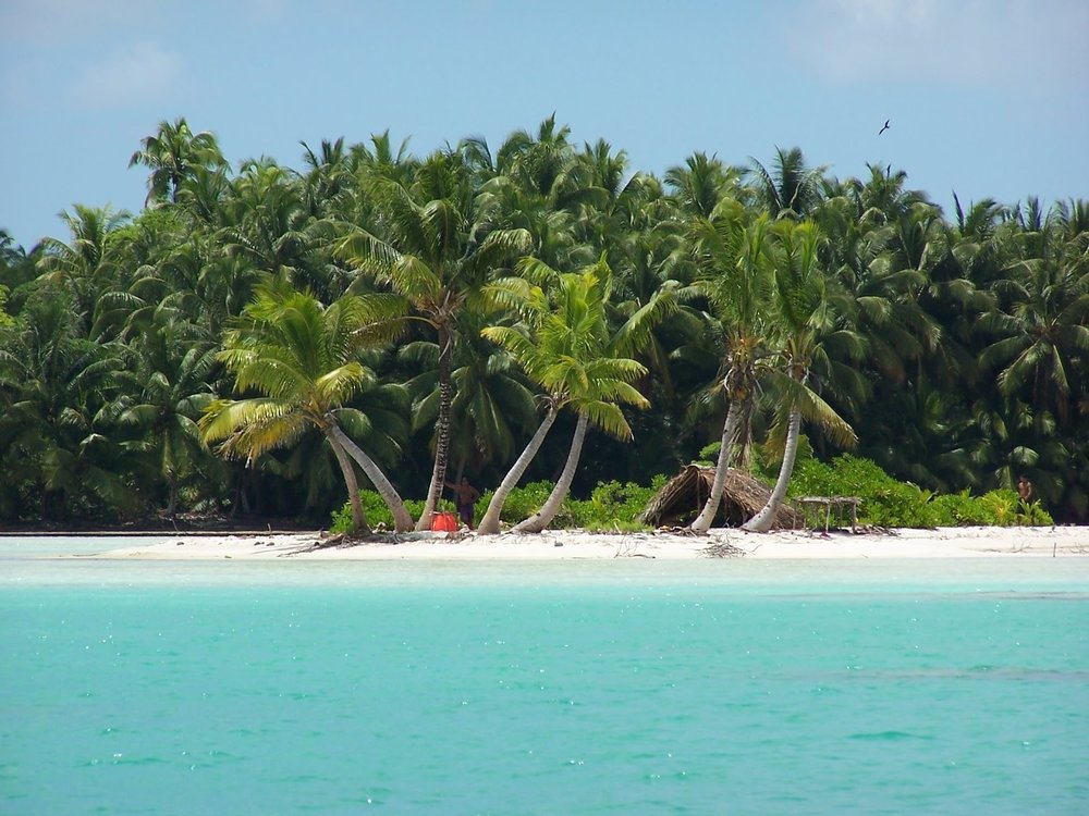 Paradisiacal white sandy shores and dense palm forests border the lagoon on all sides. Fanning Island, Pegasus Lodges.