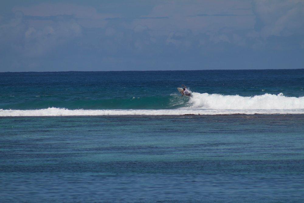 Taking advantage of the fun surf.