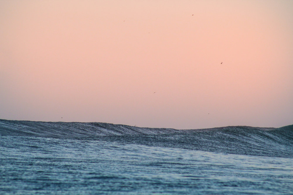 Lines rolling through at Whaler's Right at dusk.
