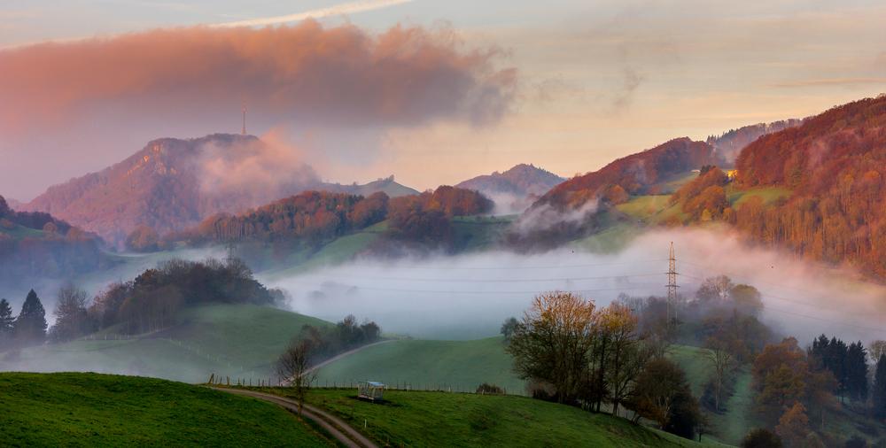 2014-11-03 - Foggy Morning1.jpg