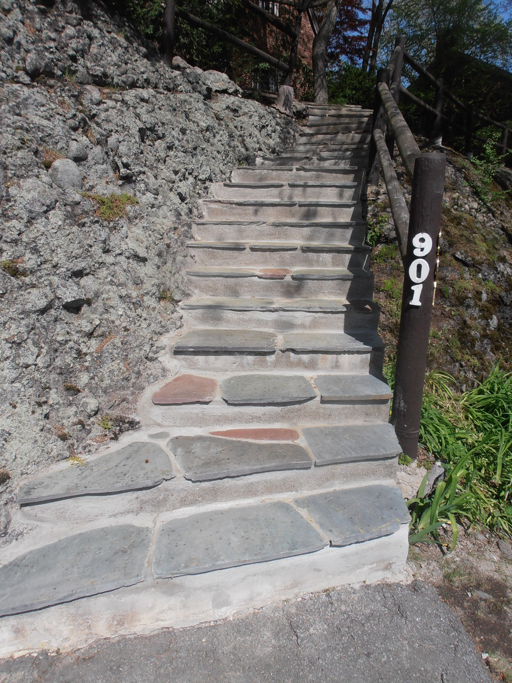 1 Steps Repaired Chestnut Hill Eaglesfield.JPG