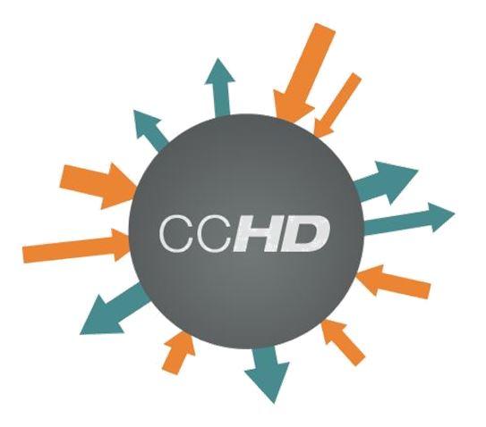 Capture+CCHDC.jpg