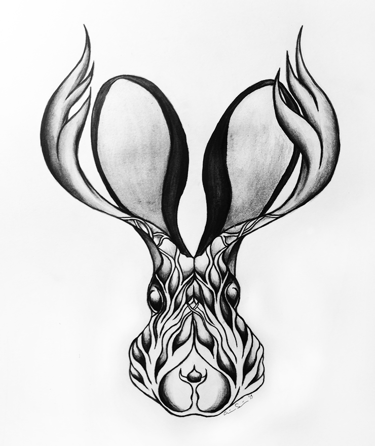 drawings_jackelope.png
