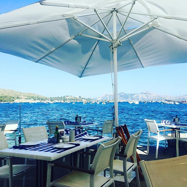 Perk of the freelance lifestyle? Getting to work from anywhere in the world - this past week we've been working by the sea in gorgeous northern Mallorca - view from the office is just divine 😋🌊 #digitalnomad #freelancelife #locationindependent #messysexychic #workfromhome #viewfromtheoffice #mallorca #coworking #worktravel #summertime