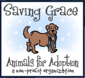 Saving Grace Rescue