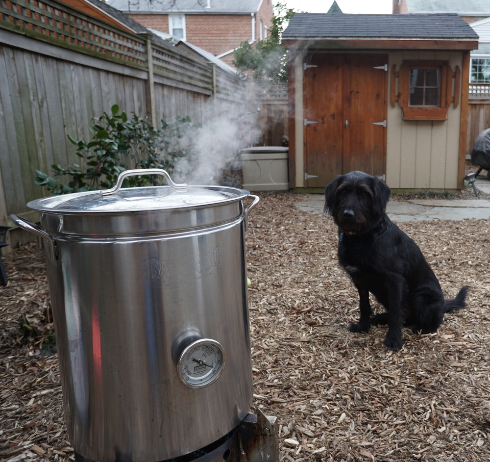 Beth's dog, and our outdoor brewing assistant, Oxford